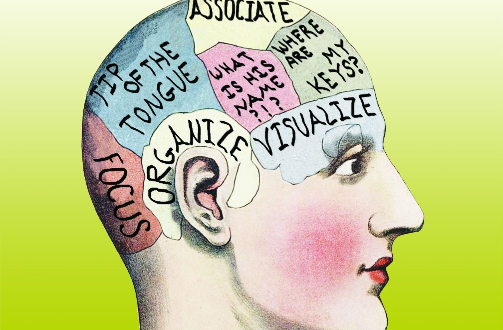 brainmapprintv4_green-1008x661.jpg