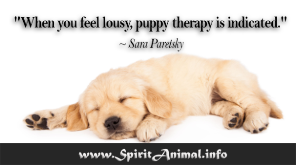 Dog-Quotes-1