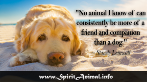 Dog-Quotes-2