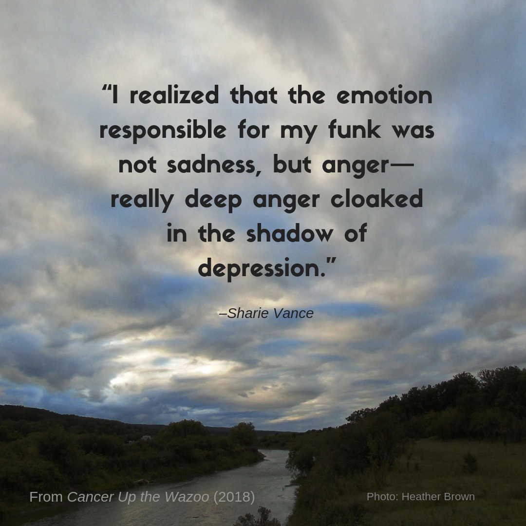 Sharie Vance depression quote
